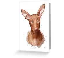 Pharaoh Hound Dog Greeting Card