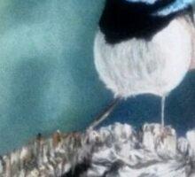 Blue Wren Sticker