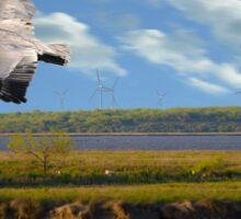 Pelican with Wind Turbines Sticker