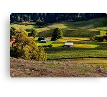 Vines in the Valley Canvas Print