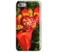 Yellow and Red Flower Blooming iPhone Case/Skin