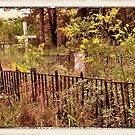 """ 'THE CEMETERY', a Series, #10,  Hinds Valley Cemetery ""... prints and products by © Bob Hall"