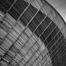 Lee Valley Velodrome #1 by David Hawkins-Weeks