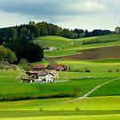 Spring in Switzerland by annalisa bianchetti
