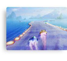 Seagul Fly (40 left!) Canvas Print