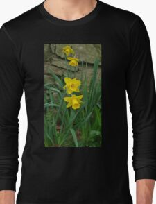 Garden Daffodils Long Sleeve T-Shirt