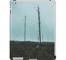 Desolate Trees iPad Case/Skin