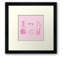Cat toys  Framed Print