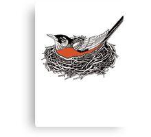 Robin Redbreast in Her Nest Illustration Canvas Print