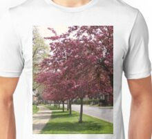 Cherry blossom time in town Unisex T-Shirt