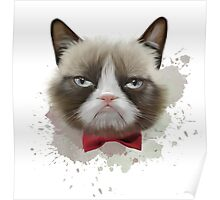 Cat with bow tie Poster