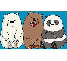 Baby Bears Photographic Print