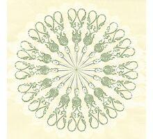 Scissor Circle Photographic Print