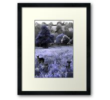 Somewhere in the undergrowth Framed Print