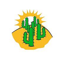 mountain hill dune sun sunset sunrise sand many kakten pattern small cactus, desert soil Photographic Print