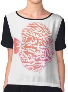 Discus fish Chiffon Top