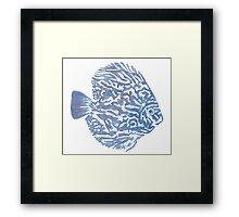 Discus fish Framed Print