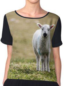 Donegal Lamb Chiffon Top