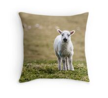 Donegal Lamb Throw Pillow