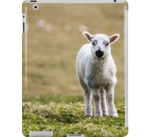 Donegal Lamb iPad Case/Skin