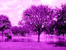 Purple Park by AuntDot