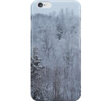 A snowy spring scene. iPhone Case/Skin