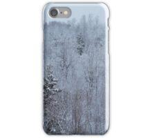 A snowy spring scene. iPhone Case/Skin