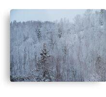 A snowy spring scene. Metal Print