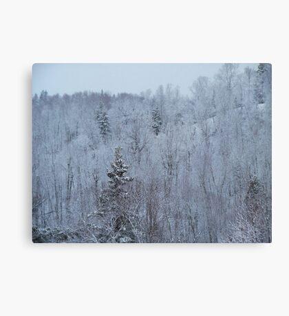 A snowy spring scene. Canvas Print