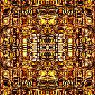 Through the Orange Glass by Scott Mitchell