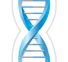Vertical segment of blue human DNA helix Sticker