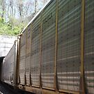 Freight Train Entering a Tunnel, Jersey City, New Jersey by lenspiro