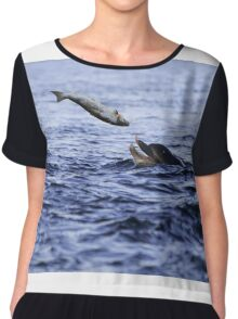 Bottle Nose dolphin eating a large salmon  Chiffon Top