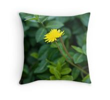 A Dandelion in the Spring Throw Pillow