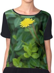 A Dandelion in the Spring Chiffon Top