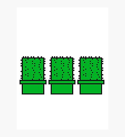 3 many pattern design pixel nerd geek gamer videogame 2d 8 bit cactus design games zocken Photographic Print