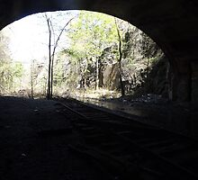 Bergen Arches, Abandoned Erie Railroad Cut, Palisades, Jersey City, New Jersey by lenspiro