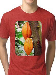 Cacao Fruit  Tri-blend T-Shirt
