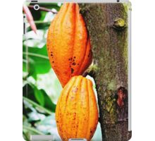 Cacao Fruit  iPad Case/Skin
