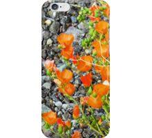Globemallow Gravel Macro iPhone Case/Skin