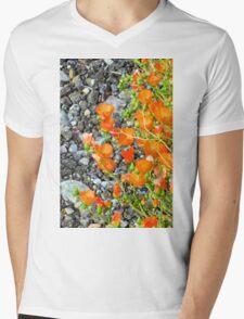 Globemallow Gravel Macro Mens V-Neck T-Shirt