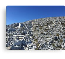 Summit Frenchmans Cap Tasmania Canvas Print