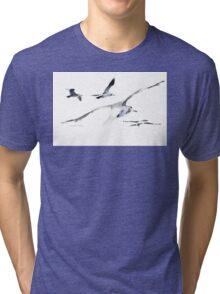 Seagulls in Randfontein?! Tri-blend T-Shirt