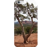 Old Earth, New View of the Desert iPhone Case/Skin