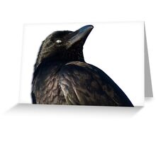 Relaxed Crow Greeting Card