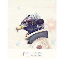 Star Team - Falco Photographic Print