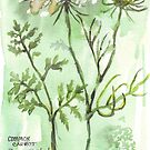 Gone to seed - Botanical by Maree Clarkson