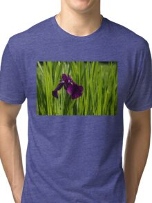 Sunny Green and Purple Summer Tri-blend T-Shirt