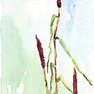 Manna from heaven (Babala) - Botanical by Maree Clarkson