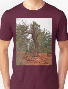 Juniper Twister T-Shirt